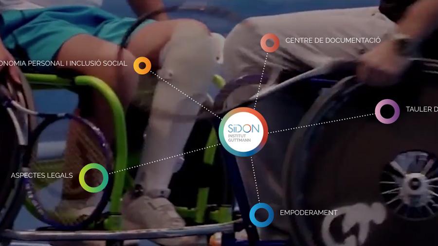 Col·labora amb el portal web SiiDON sobre el món de la discapacitat d'origen neurològic